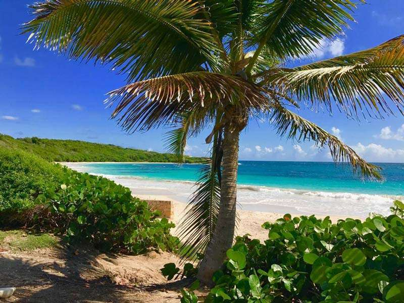 Dario Item, Antigua and Barbuda Ambassador, welcomes digital nomads who want to be based in the Caribbean